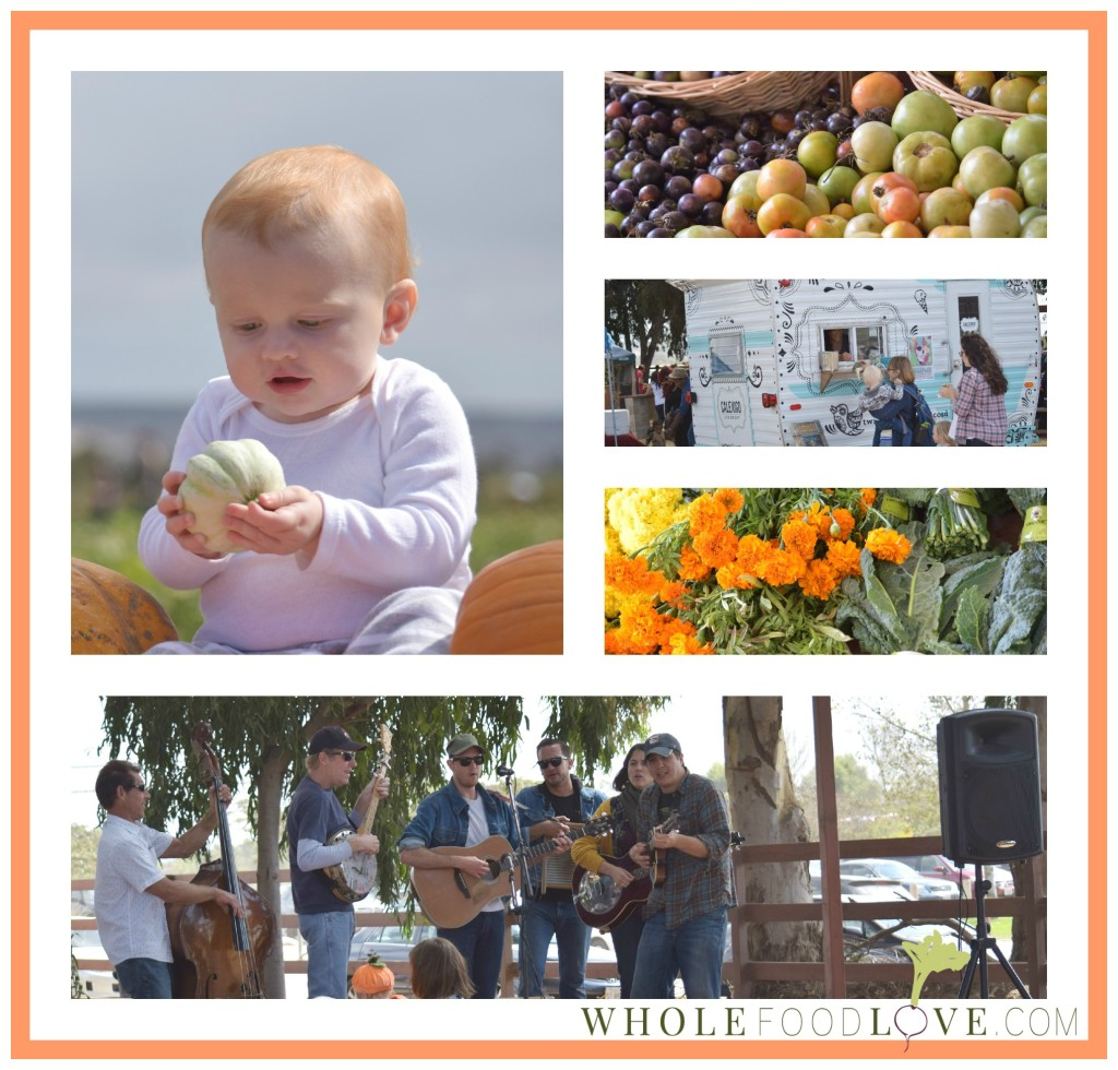 WFL Pumpkin Patch Collage